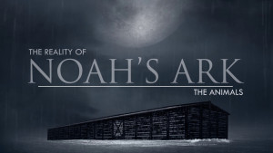 The Animals | The Reality of Noah's Ark