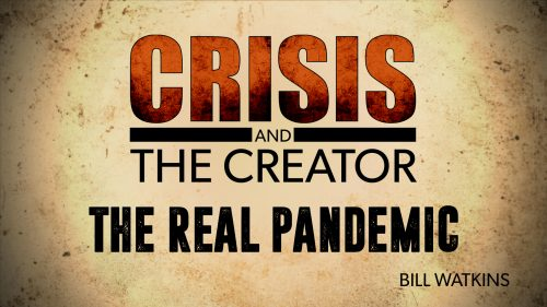 The Real Pandemic| Crisis and the Creator