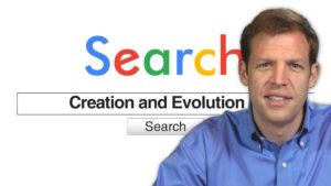 Search Creation and Evolution