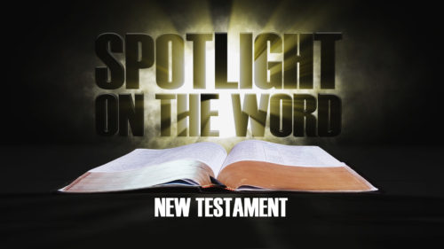 Spotlight-on-the-Word-New-Testament.jpg