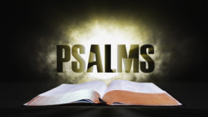 14. Psalms | Spotlight on the Word: Old Testament
