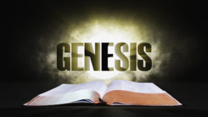 3. Genesis | Spotlight on the Word: Old Testament