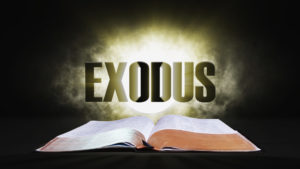 4. Exodus | Spotlight on the Word: Old Testament