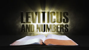 5. Leviticus and Numbers | Spotlight on the Word: Old Testament