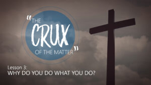3. Why Do You Do What You Do? | The Crux of the Matter