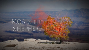 Part 2: Moses the Shepherd
